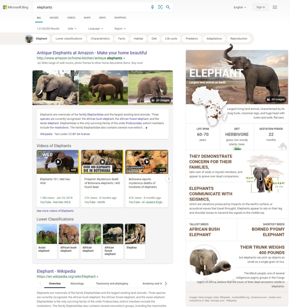 Infographic inspired search experience - Microsoft Bing